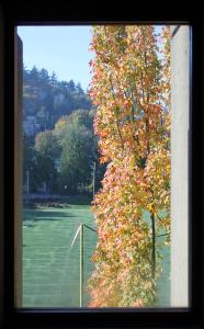 Autumn View 5th floor