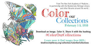 Color Our Collections social media graphic