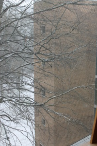 Febrary Snow