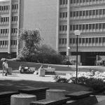 Vintage Park Blocks