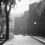 Vintage Park Blocks Blackstone