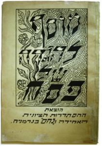 Cover of Survivors Haggadah